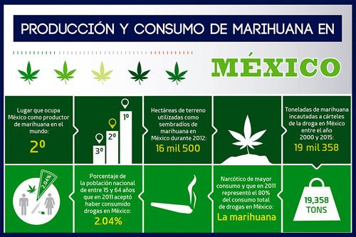 Producción y consumo de marihuana en México